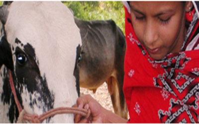 Tahira's story
