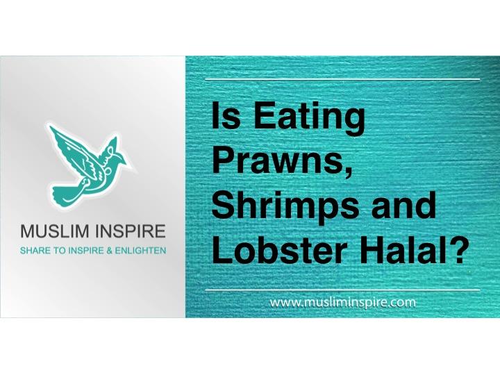 Is eating Prawns, Shrimps and Lobster Halal?