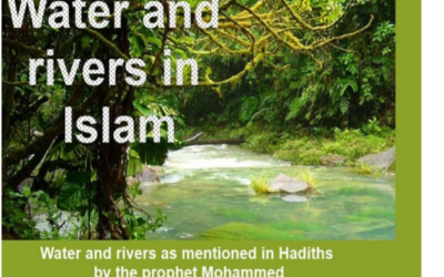 If alcohol is prohibited, why are Muslims rewarded with rivers of wine in heaven?